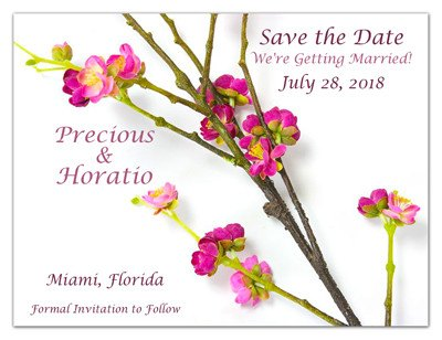 Flower Save the Date Magnets | Plum Blossom