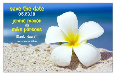Beach Save the Date Magnets | Plumeria on Beach | MAGNETQUEEN