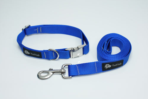 Matching Leash and Collar set Royal Blue and Silver - Poshtails