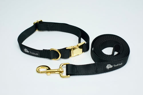 Matching Leash and Collar set Black and Gold - Poshtails