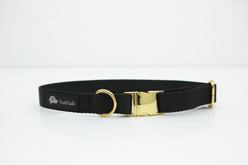 Black and Gold Dog Collar - Poshtails