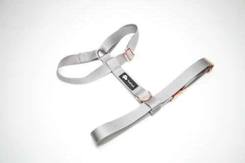 Gray and Rose Gold Dual Strap Dog Harness - Poshtails