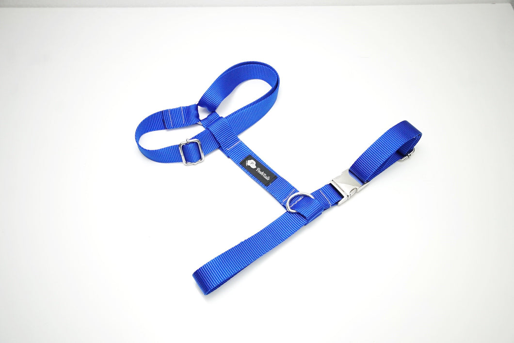 Blue and Silver Dual Strap Dog Harness - Poshtails