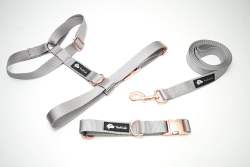 Walk Kit -Dog Collar, Harness and Leash Gray and Rose Gold Matching set - Poshtails
