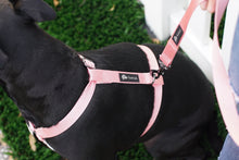 Load image into Gallery viewer, Pastel Pink & Gunmetal Black Dual Strap Dog Harness - Poshtails