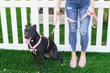 Load image into Gallery viewer, Walk Kit - Dog Collar, Harness and Leash Pink and Gunmetal Black Matching set - Poshtails