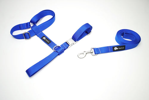 Dog Harness and Leash Blue and Silver Matching set - Poshtails