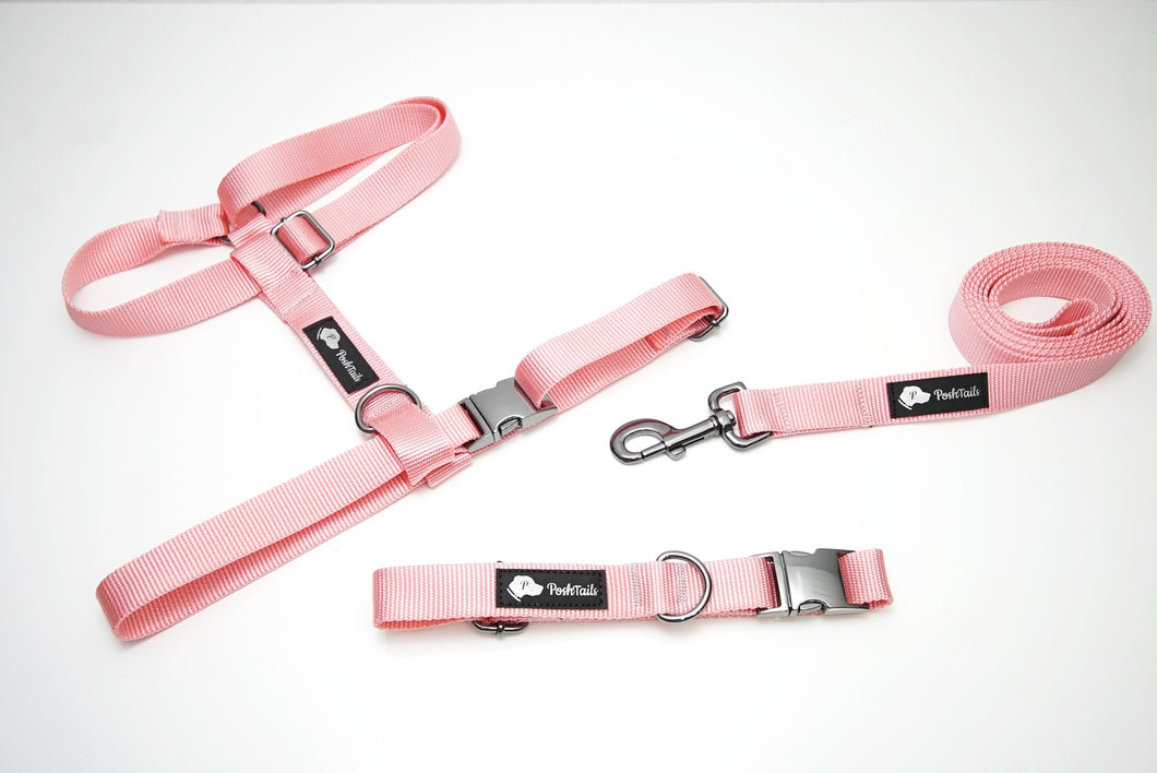 Walk Kit - Dog Collar, Harness and Leash Pink and Gunmetal Black Matching set - Poshtails