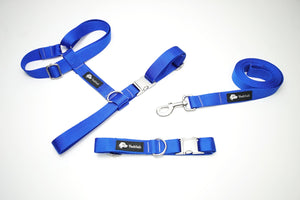 Walk Kit - Dog Collar, Harness and Leash Blue and Silver Matching set - Poshtails