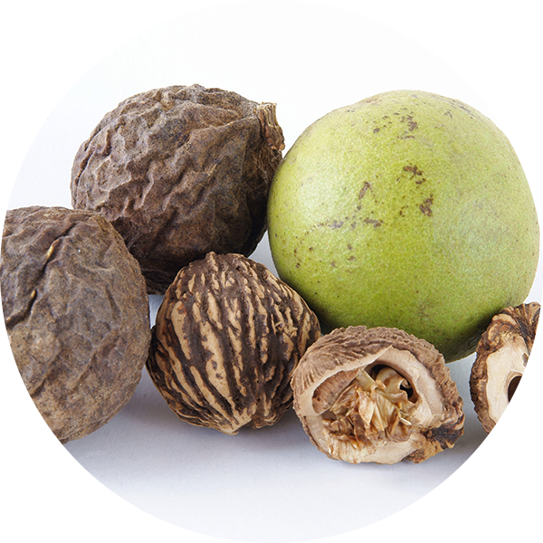 Ingredient Black (Indian) Walnut
