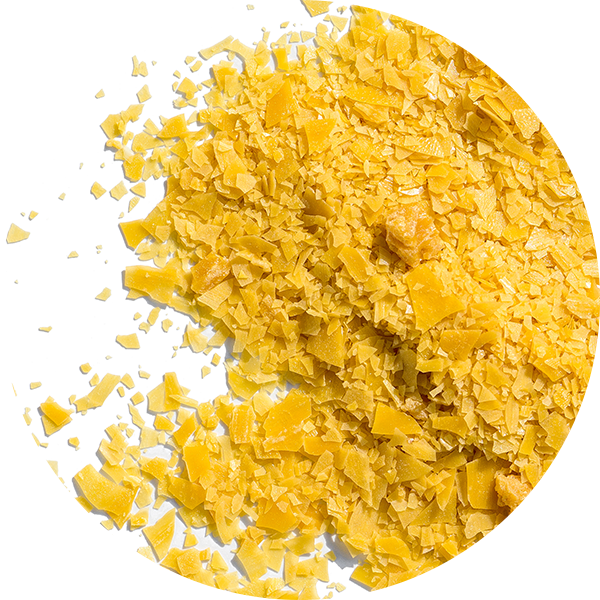 Ingredient Carnauba wax