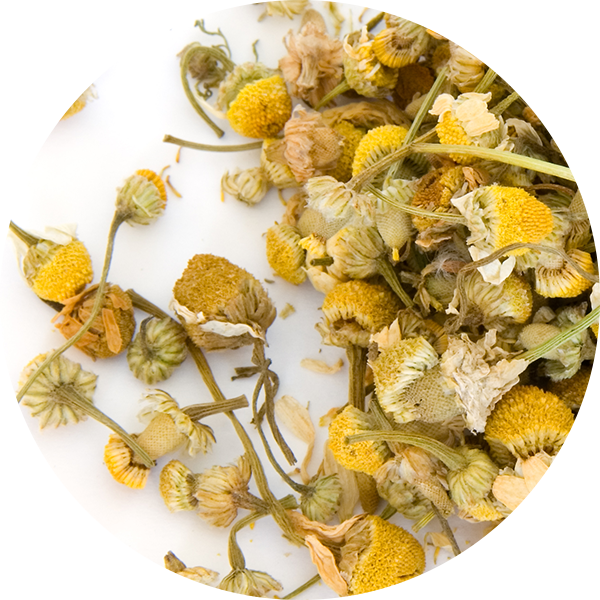 Ingredient Chamomile