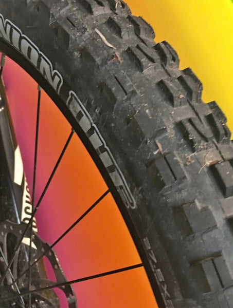 Customer Review Maxxis Minion Plus Size Tires