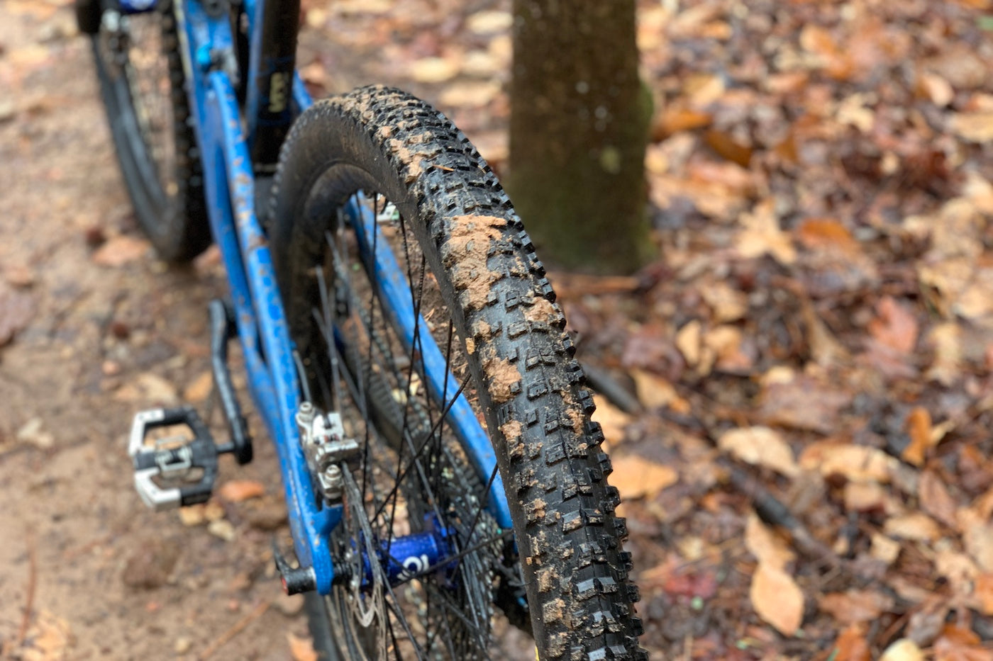 Maxxis Rekon Tire Review - Worldwide Cyclery