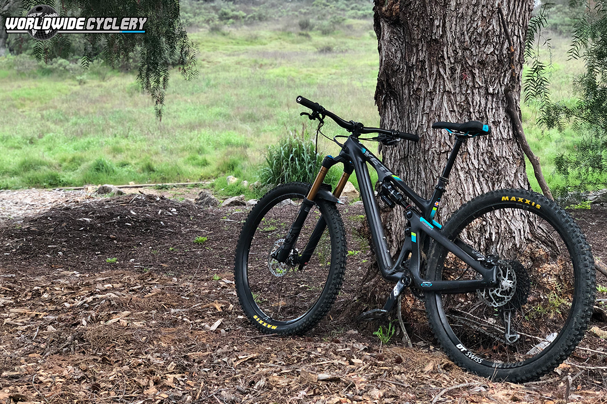 Maxxis DHF/DHRII EXO+ Tire Review: Employee Review