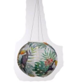 "Chinese Solar Lantern Parrot White - 9.8"" x 9.8"" ON SALE"