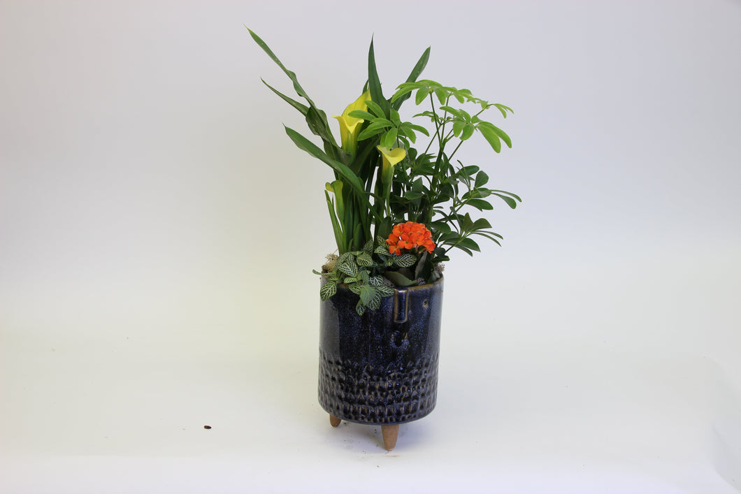 Footed Owl Pot Tropical Arrangement