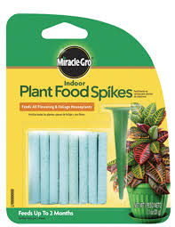 MG House Plant Spikes Tray 6-12-6   - 31g
