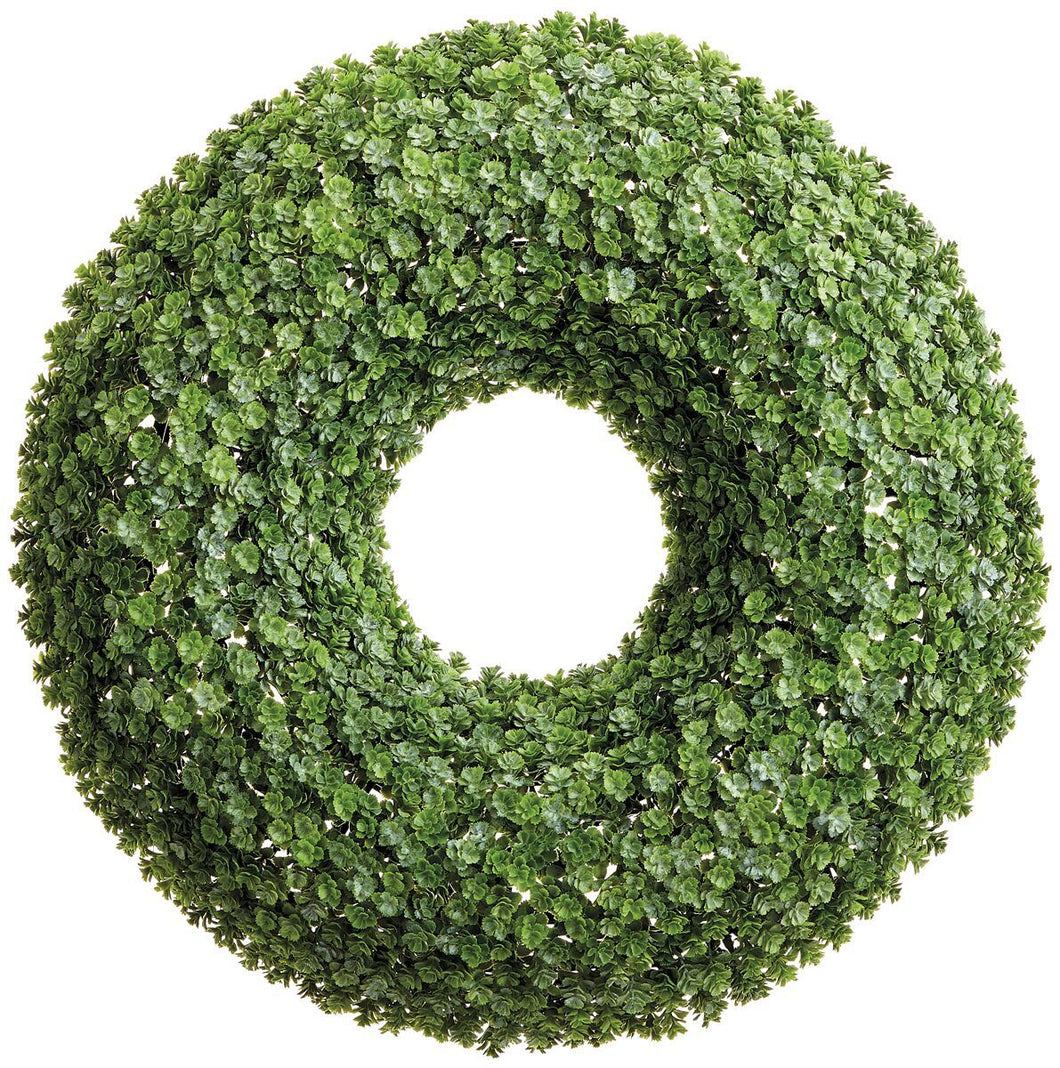 Sedum Wreath 20