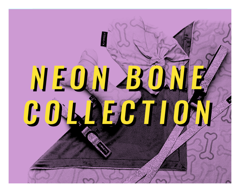 Neon Bone Collection