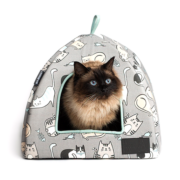Kitten Around - Igloo Cat Bed