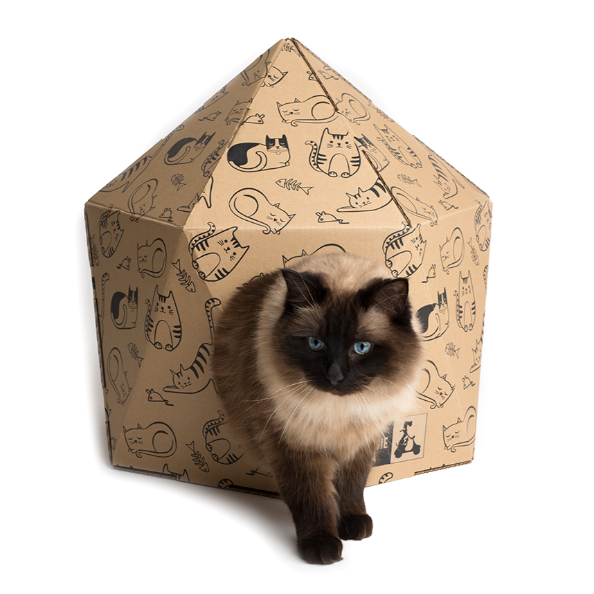 50% OFF! ON SALE! Kitten Around - Geo Cardboard Cat House