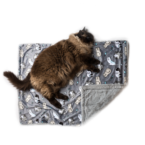 La Doggie Vita - Kitten Around Cat Blanket