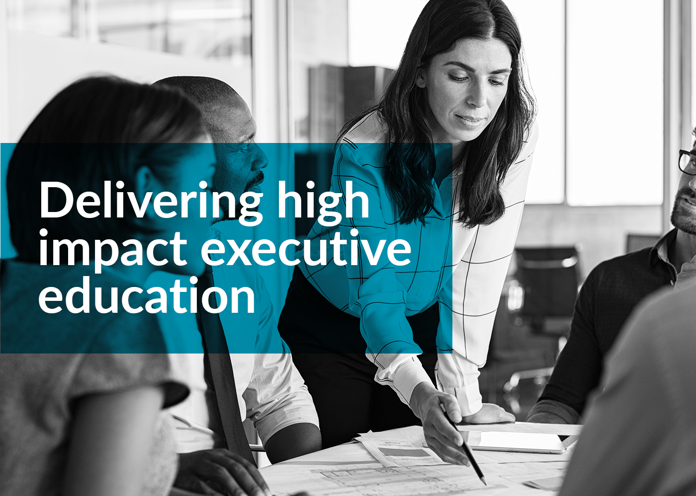 Esme Learning Solutions, delivering high impact executive education