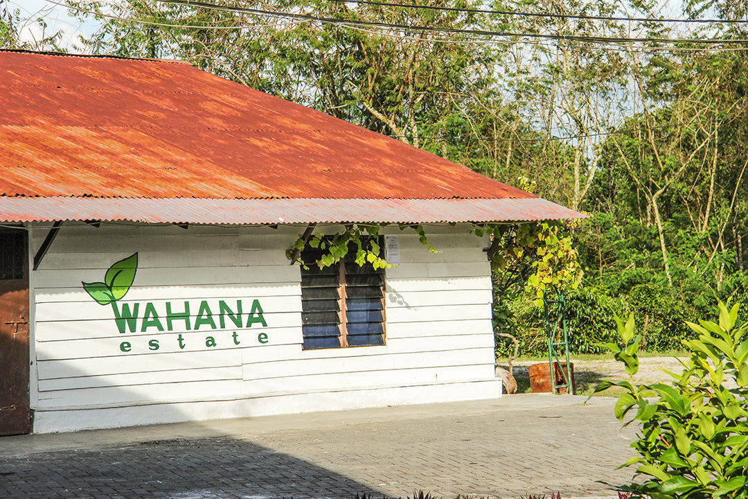 Wahana estate