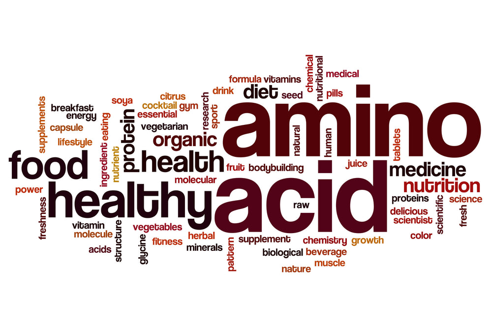 Amino acids for muscle building