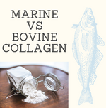Marine vs Bovine Collagen: What's the difference?