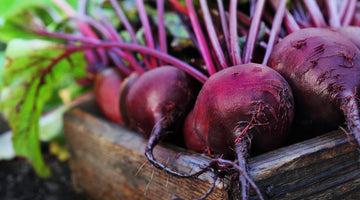 BEET can be used in neurological diseases!