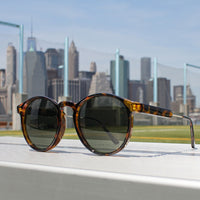 Jase New York Connor Sunglasses in Havana - US ONLY