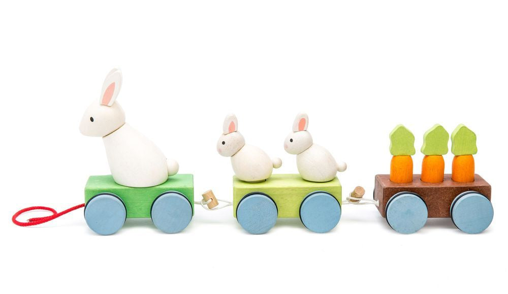 Le Toy Van Petilou Bunny Train - Toyworld