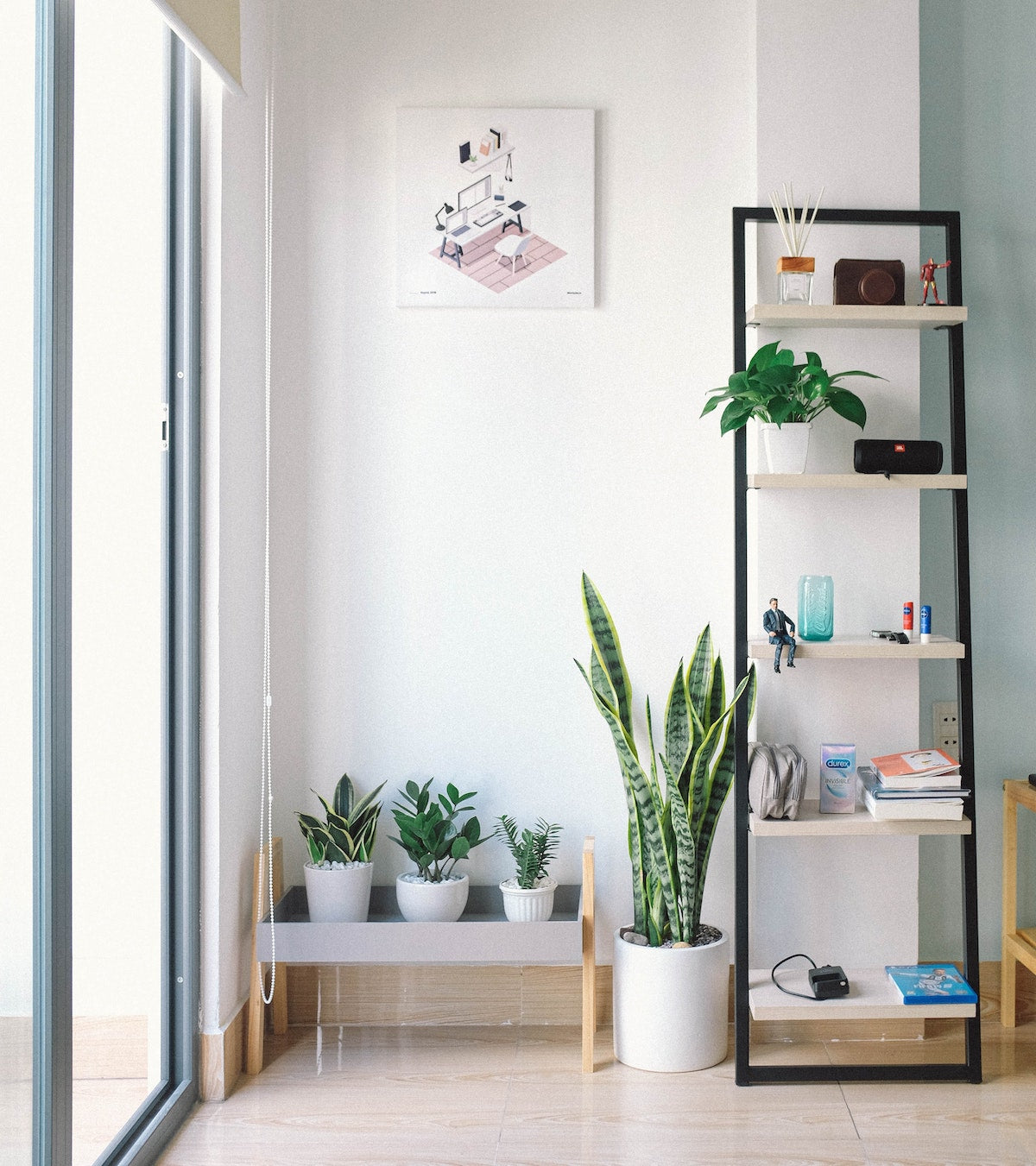 living room filled with plants