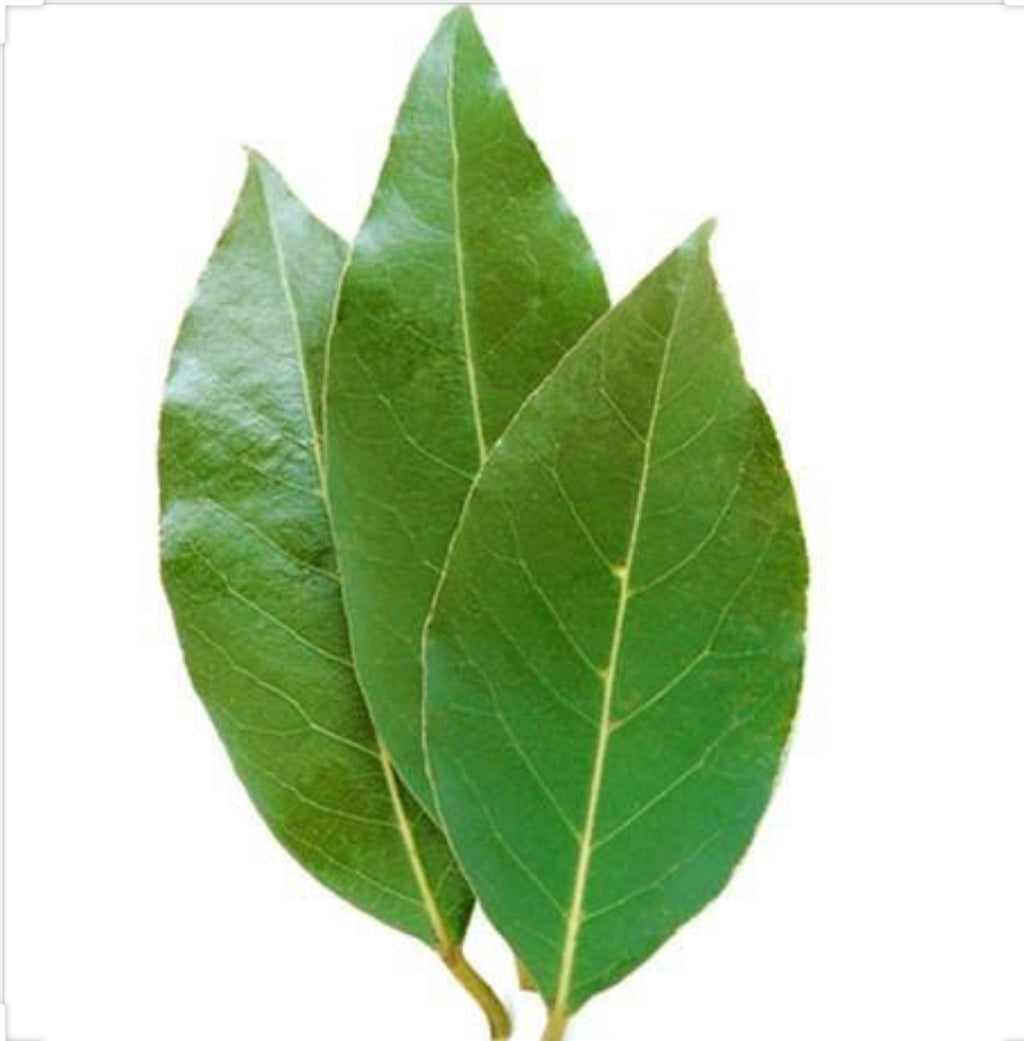 Bay Leaves PKT