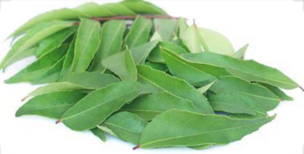 Curry Leaves PKT