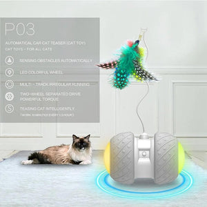 Electronic Cat Toy