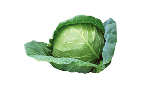 Cabbage Green ea