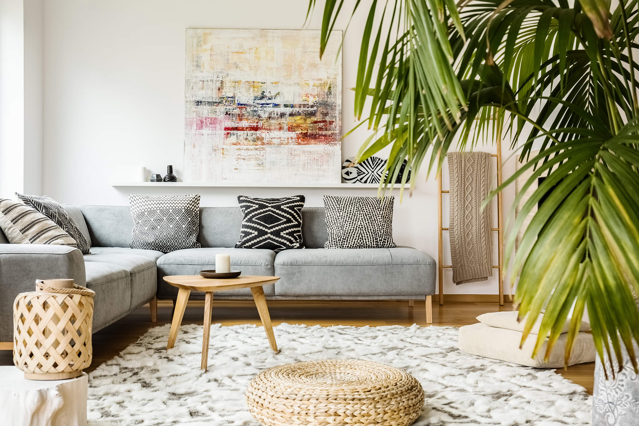 plants in a living room to liven it up