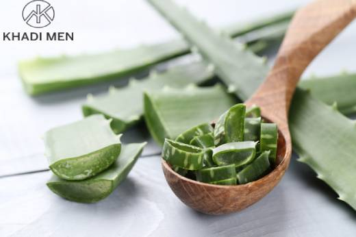 5 benefits of Aloe Vera Gel: Uses of Aloe Vera Gel
