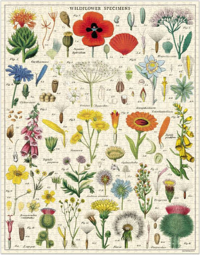 Cavallini Wildflowers Vintage Puzzle 1000 Pieces from Indie Edinburgh