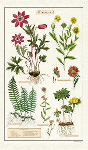 Cavallini Herbarium Cotton Tea Towel available from Indie Edinburgh
