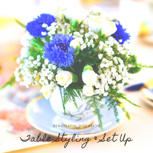 Table Styling & Set up Package