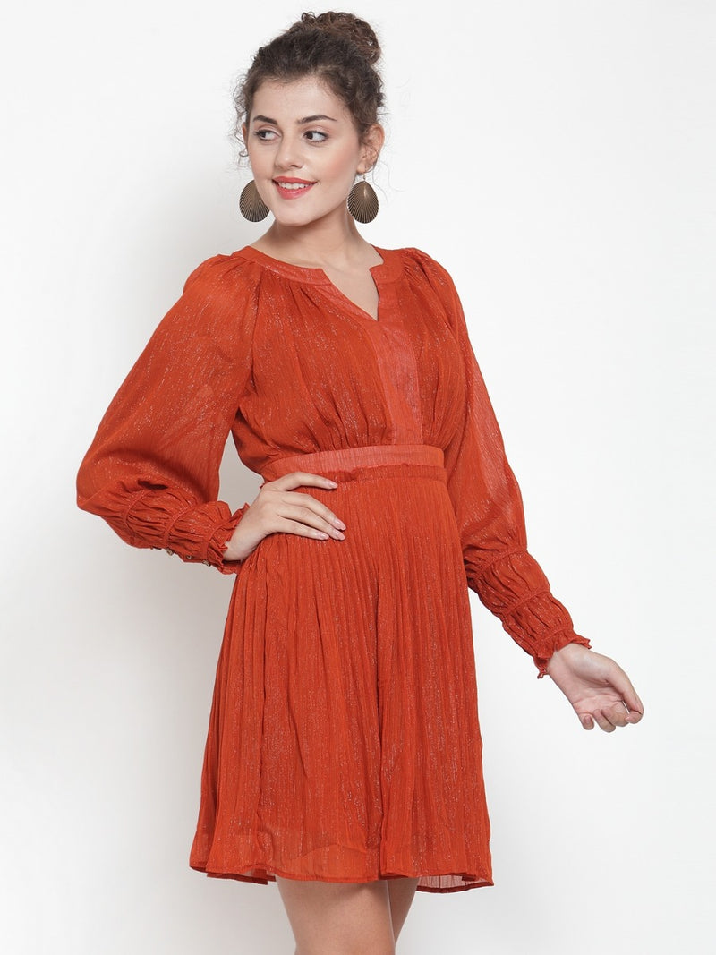 Women Self Design Rust Dress