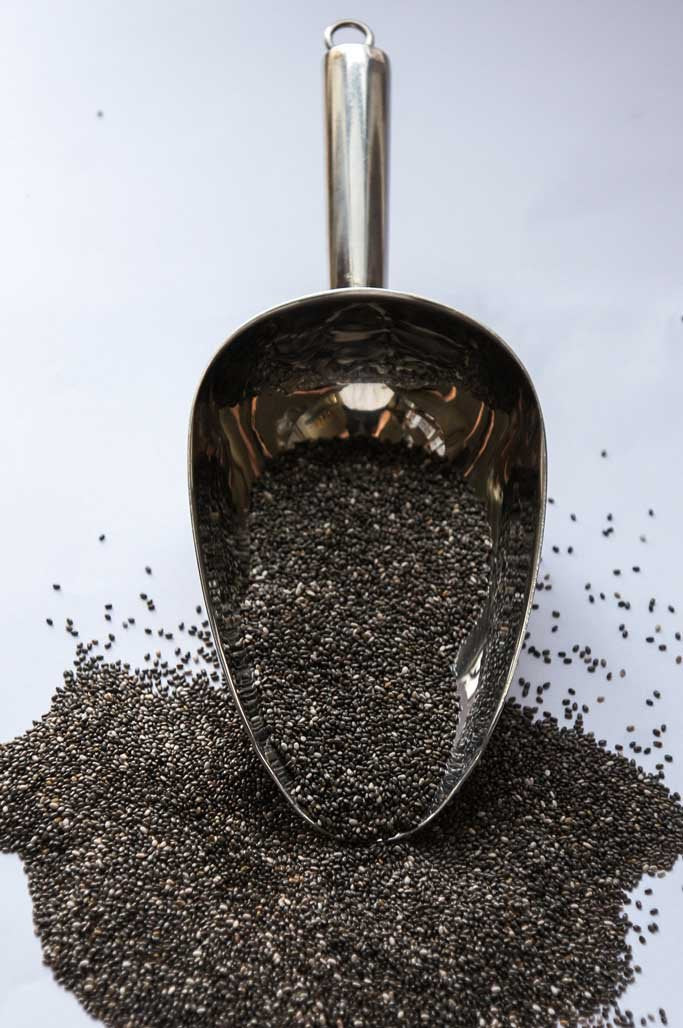 Organic Chia Seeds-Baking Products, Cereals and Breakfast, Organic-SproutTheGrocer