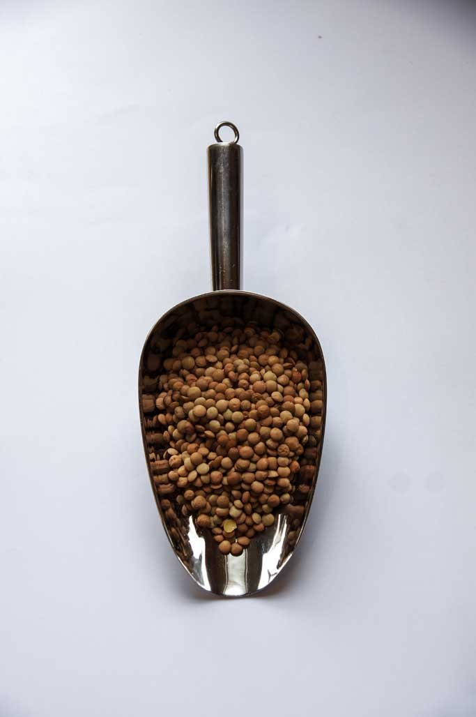 Lentils brown-Beans & pulses-SproutTheGrocer