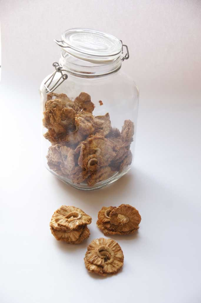 Organic Pineapple Rings-Dried Fruit-SproutTheGrocer