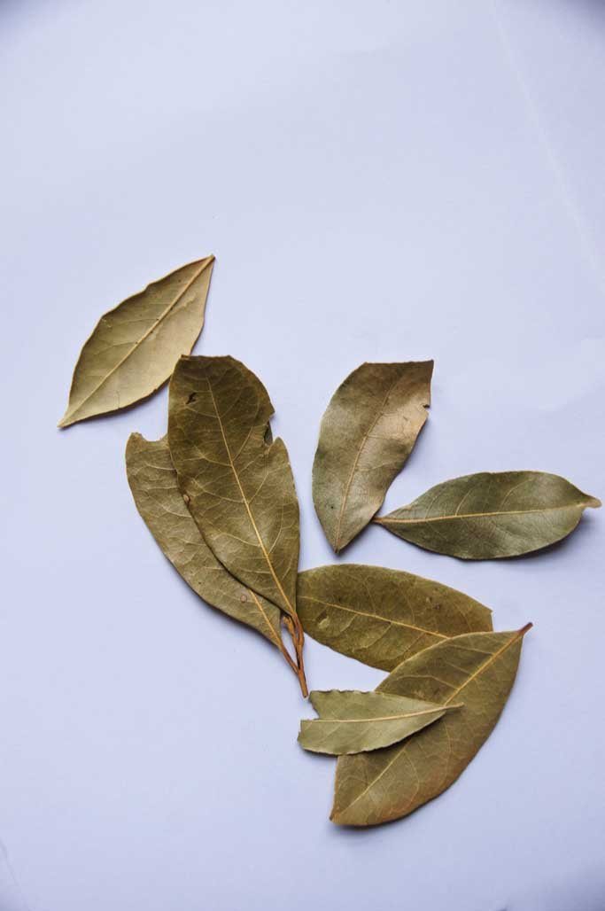 Bay leaves-Herbs & Spices-SproutTheGrocer