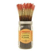 Champa Flower Wild Berry Incense Sticks
